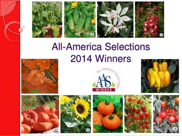 2014 All-America Selections Winners