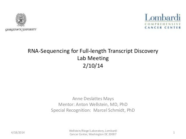RNA-Sequencing for Full-length Transcript Discovery Lab Meeting 2/10/14 Anne Deslattes Mays Mentor: Anton Wellstein, MD, P...