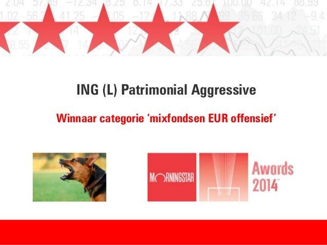 ING (L) Patrimonial Aggressive Winnaar categorie 'mixfondsen EUR offensief'
