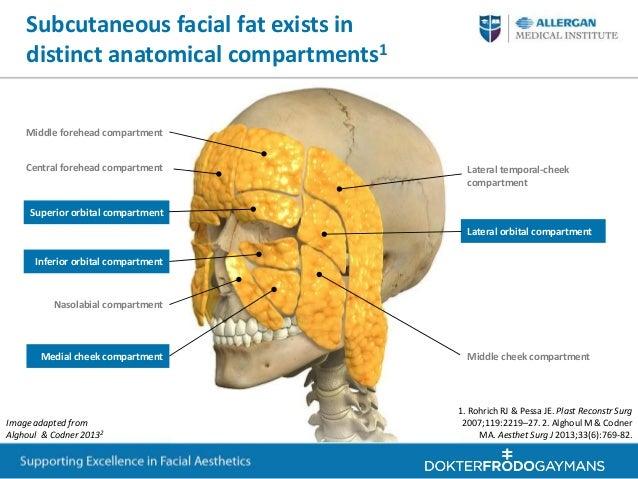 Fat Transfer Surgery at botonics UK