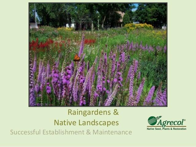 Raingarden Education