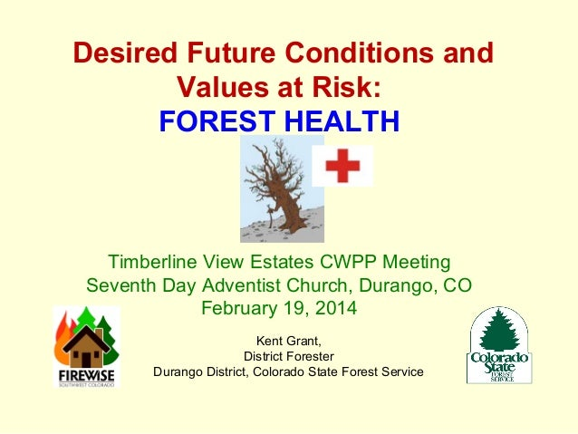 Desired Future Conditions and Values at Risk: FOREST HEALTH  Timberline View Estates CWPP Meeting Seventh Day Adventist Ch...
