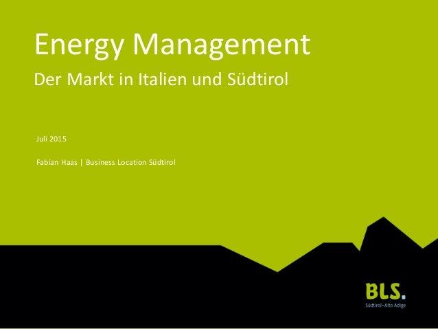 Energy Management Der Markt in Italien und Südtirol Juli 2015 Fabian Haas | Business Location Südtirol