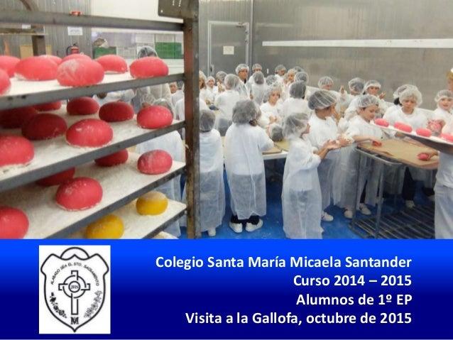 Colegio Santa María Micaela Santander Curso 2014 – 2015 Alumnos de 1º EP Visita a la Gallofa, octubre de 2015