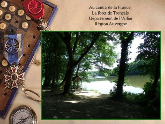 Au centre de la France,Au centre de la France, La foret de TronçaisLa foret de Tronçais Département de l'AllierDépartement...