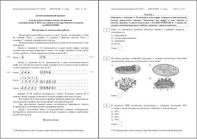 егэ по биологии инструкция - фото 5