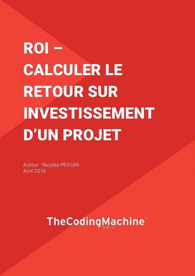 1 ROI – CALCULER LE RETOUR SUR INVESTISSEMENT D'UN PROJET Auteur : Nicolas PEGUIN Avril 2016