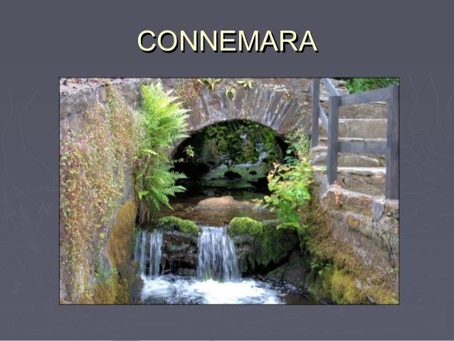 CONNEMARACONNEMARA Music – Robert Plant Big Log