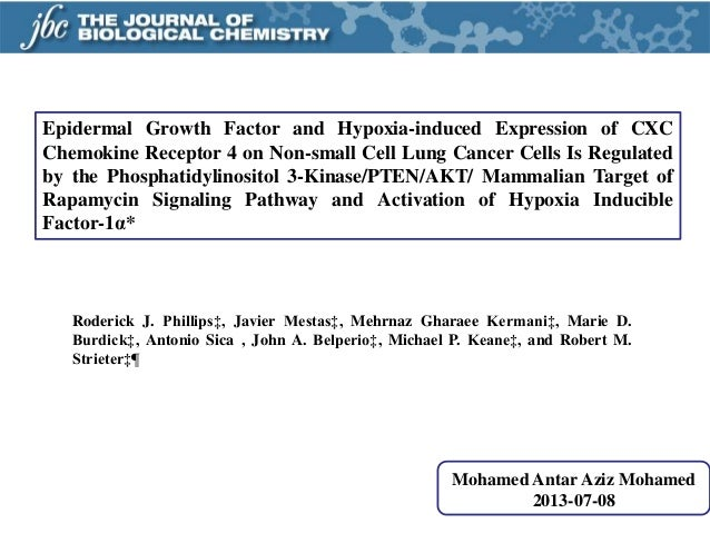 Epidermal Growth Factor and Hypoxia-induced Expression of CXC Chemokine Receptor 4 on Non-small Cell Lung Cancer Cells Is ...