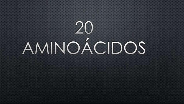 20 aminoacidos