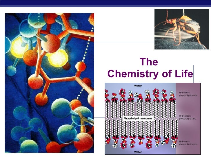 The  Chemistry of Life