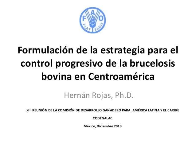 Formulación de la estrategia para el control progresivo de la brucelosis bovina en Centroamérica Hernán Rojas, Ph.D. XII R...