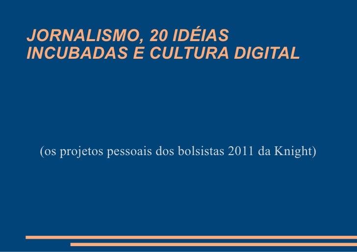 JORNALISMO, 20 IDÉIASINCUBADAS E CULTURA DIGITAL (os projetos pessoais dos bolsistas 2011 da Knight)