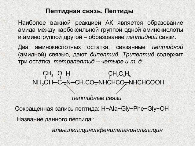 Трипептид содержиттри остатка