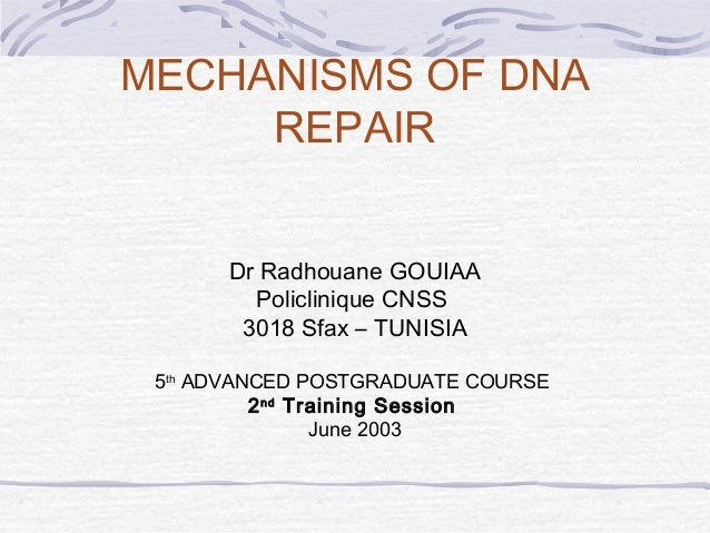 MECHANISMS OF DNA REPAIR Dr Radhouane GOUIAA Policlinique CNSS 3018 Sfax – TUNISIA 5th ADVANCED POSTGRADUATE COURSE 2nd Tr...