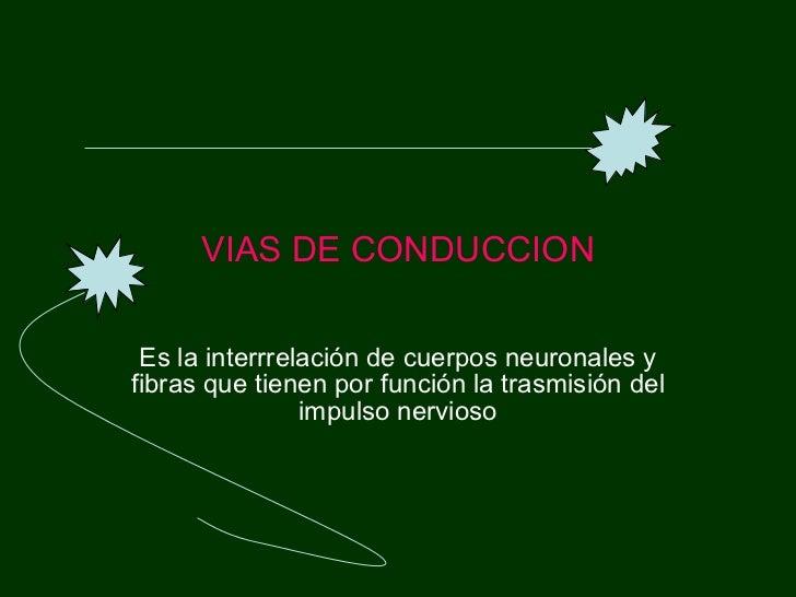 VIAS DE CONDUCCION Es la interrrelación de cuerpos neuronales y fibras que tienen por función la trasmisión del impulso ne...