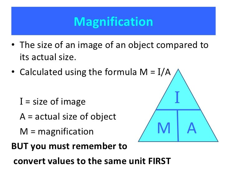 resolution and magnification essay Summary this review (re)‐introduces the concepts of magnification,  resolution, and contrast, and explores how they are intimately related.