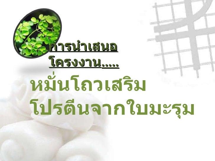 การนำเสนอโครงงาน ครั้งที่ 2 17 1-11