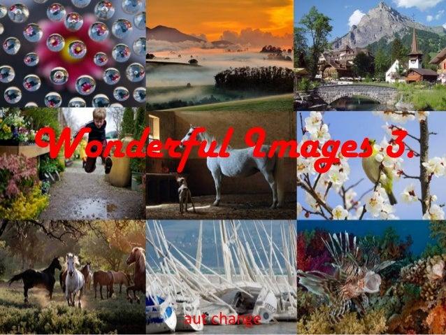 Wonderful Images 3.aut change