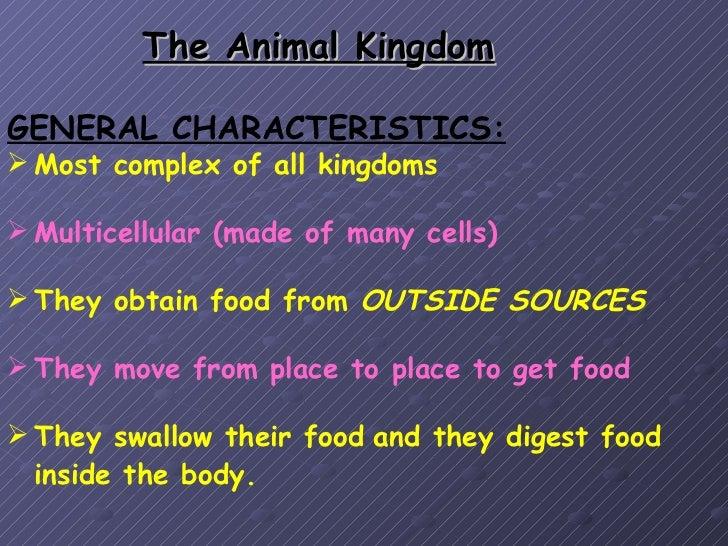 21 animal kingdom