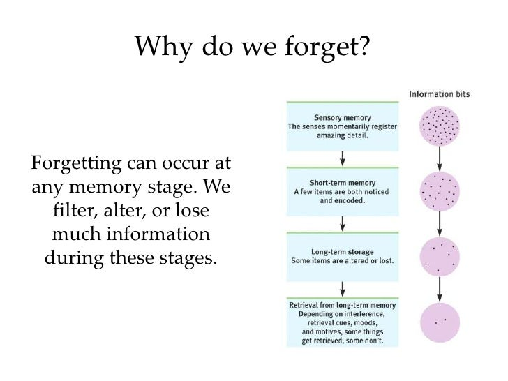 why we forget Psychological scientists are exploring the mechanisms that underlie memory to understand why we remember certain things and why we forget others.