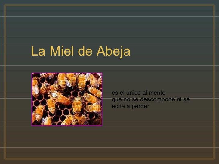 Miel y Canela (por: carlitosrangel)