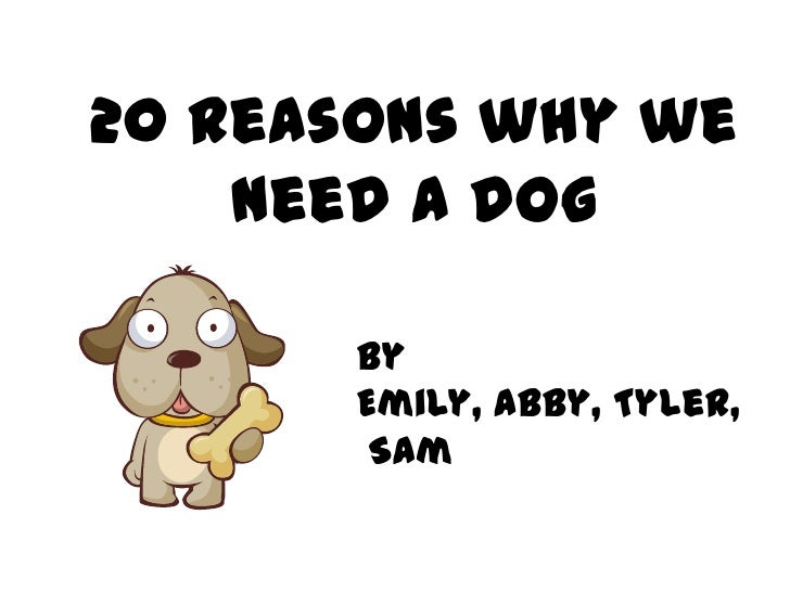 21 reasons why we should get a dog
