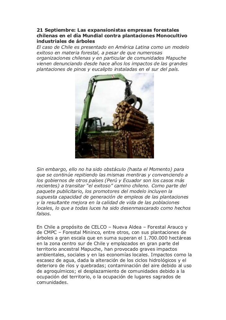 21 Septiembre: Las expansionistas empresas forestaleschilenas en el día Mundial contra plantaciones Monocultivoindustriale...
