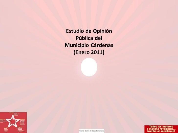 ENCUESTA ENERO 2011 CARDENAS