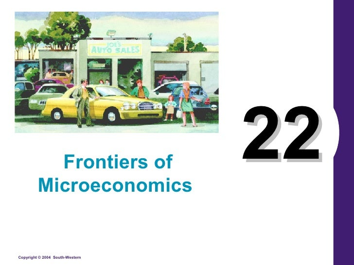 22 Frontiers of Microeconomics