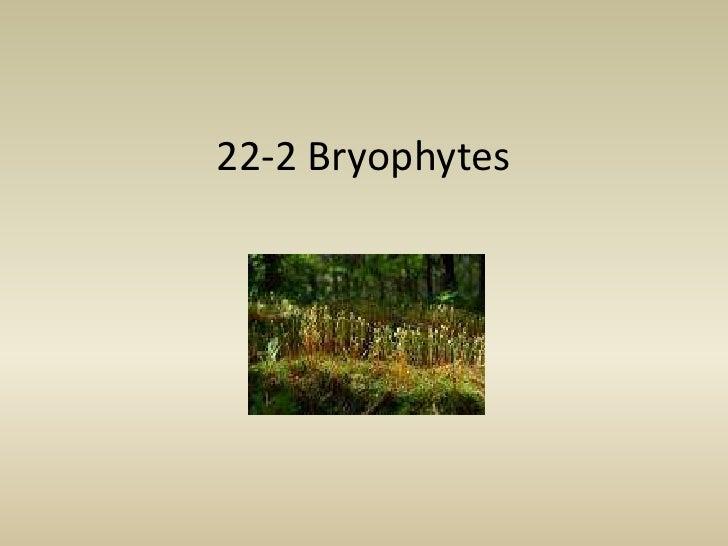 22 2 Bryophytes