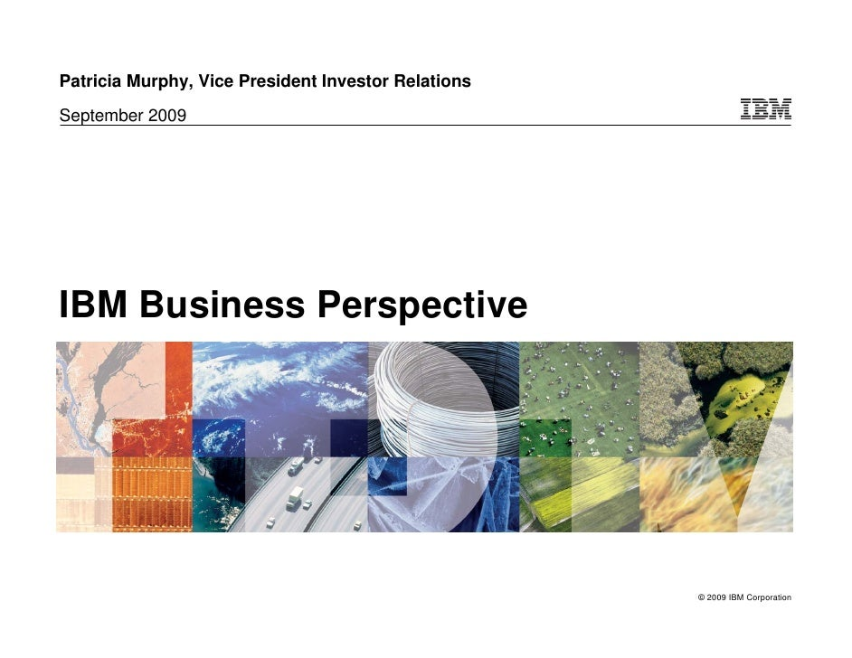 Patricia Murphy, Vice President Investor Relations September 2009     IBM Business Perspective                            ...