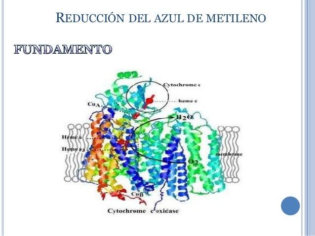 Baños Azul De Metileno:reducción del azul de metileno 53 reducción del azul de