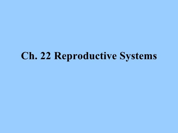 22 Reproductive
