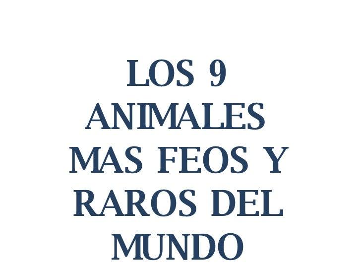 LOS 9 ANIMALES MAS FEOS Y RAROS DEL MUNDO