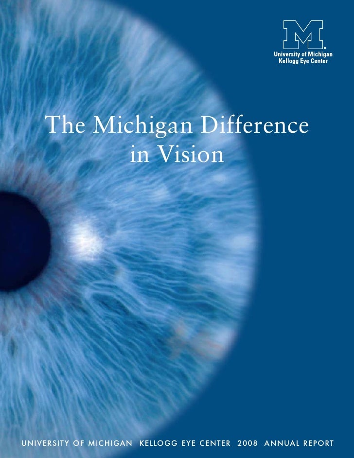 Michigan Difference in Vision