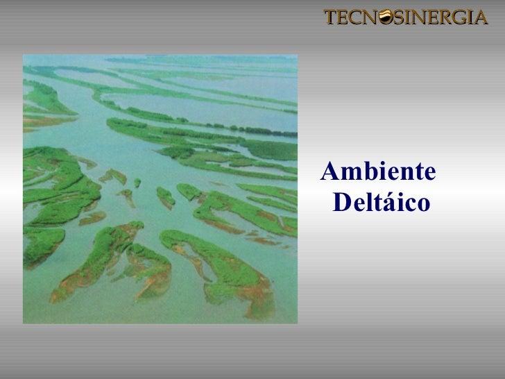 Ambiente  Deltáico TECNOSINERGIA