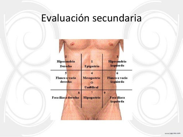 evaluacion primaria secundaria primeros auxilios pdf