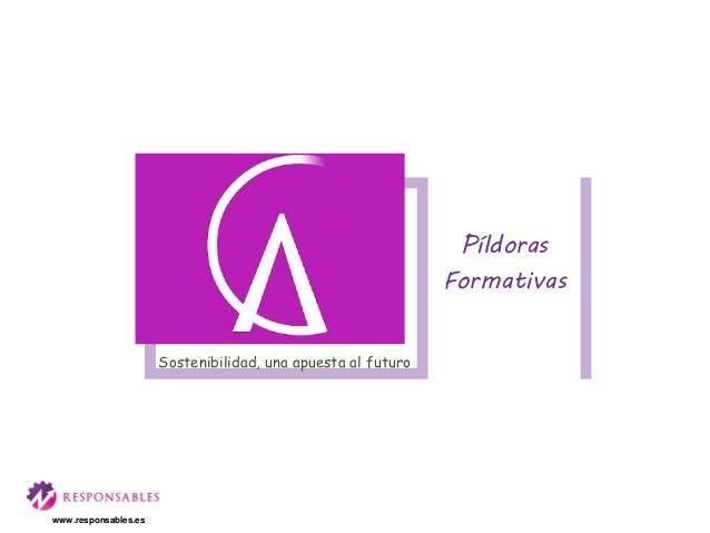 Sostenibilidad, una apuesta al futuro Píldoras Formativas www.responsables.es