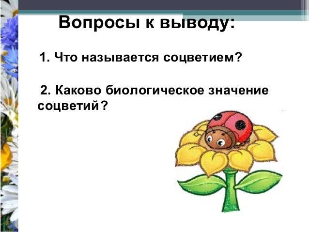 Что называется соцветием? 2.