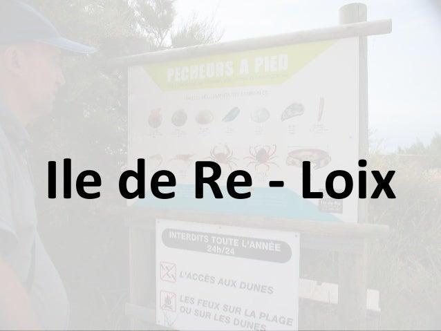Ile de Re - Loix