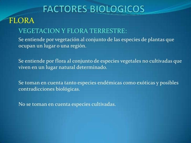 FLORA VEGETACION Y FLORA TERRESTRE: Se entiende por vegetación al conjunto de las especies de plantas que ocupan un lugar ...