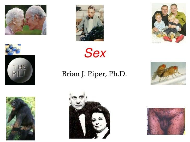 SexBrian J. Piper, Ph.D.