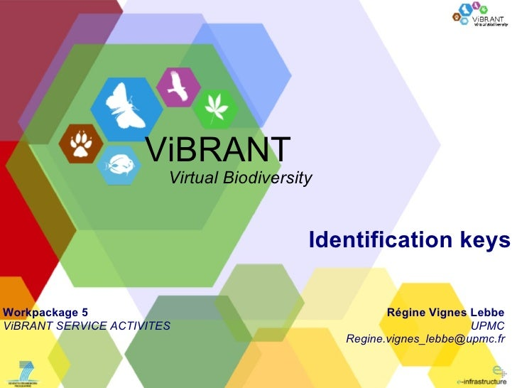 Identification keys Régine Vignes Lebbe UPMC [email_address] ViBRANT Virtual Biodiversity Workpackage 5 ViBRANT SERVICE AC...