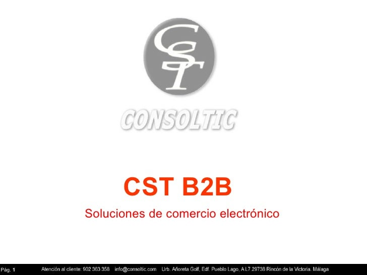 CST B2B Soluciones de comercio electrónico Pág.  1