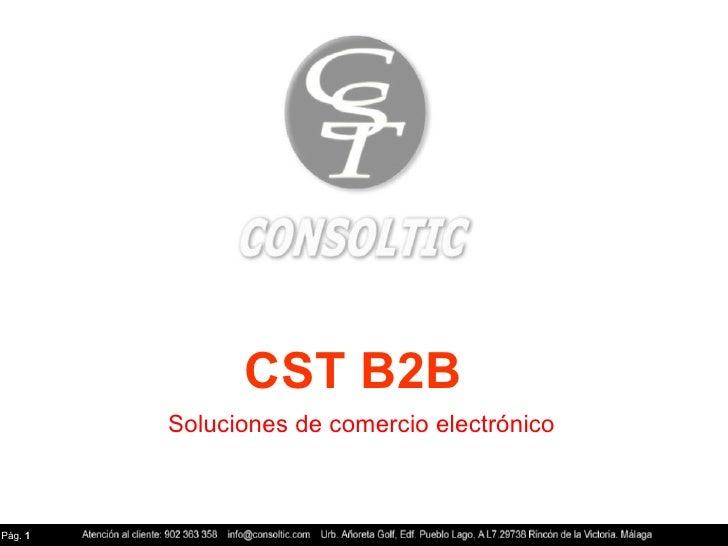 CST B2B