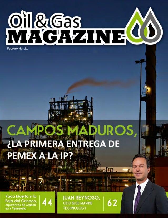 Oil & Gas Magazine Febrero 2014
