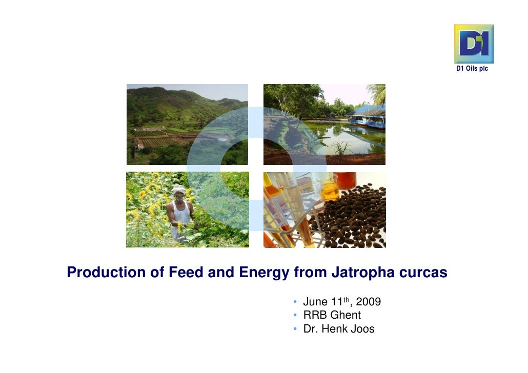 D1 Oils plcProduction of Feed and Energy from Jatropha curcas                             • June 11th, 2009               ...