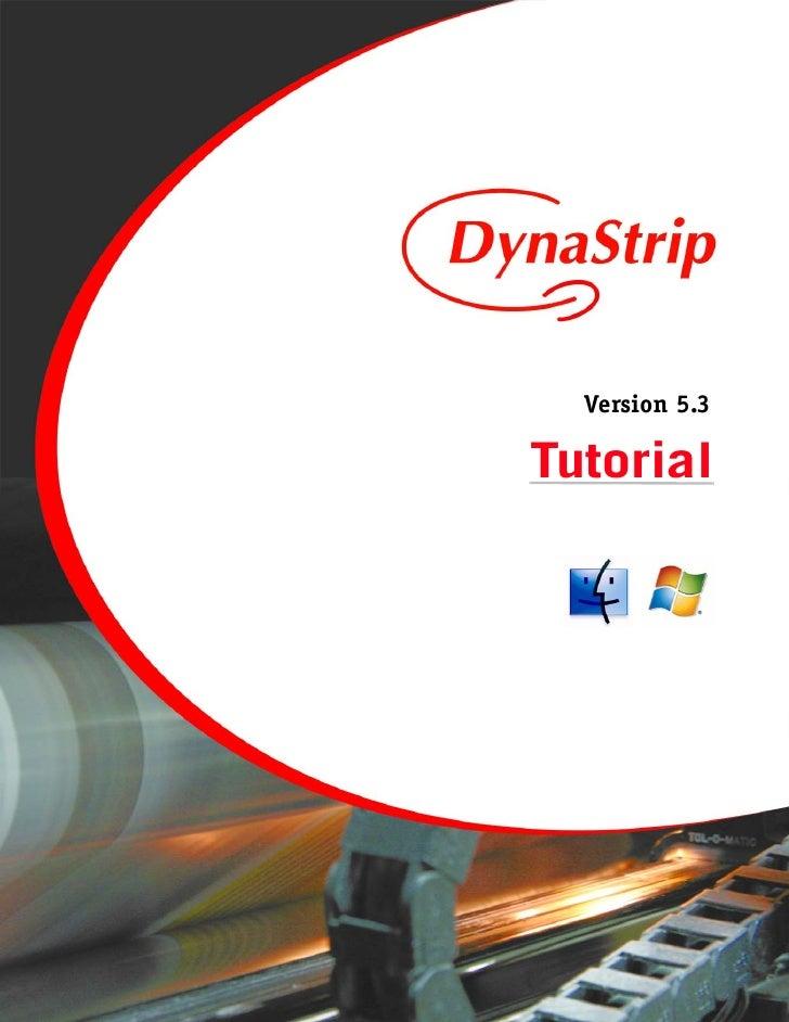 DynaStripTutorial