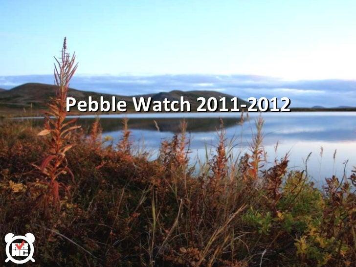 Pebble Watch 2011-2012